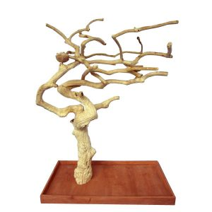Java wood tree, Java wood tree play stand, Java wood tree for sale, Java wood tree stand, Java wood tree for parots, Parrot stand wood, Java wood parrot play stand, Bird play stand, Bird perch, Java wood perch, Java wood perches, Java wood branches, Java wood bird perches, Java wood bird stand, Java wood parrot stand, Bird shop, Lovebird cage