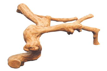 reptile branches, reptile climbing branches, reptile wood branches, large reptile branches, reptile cages, bearded dragon cage, terrarium supplies, chameleon cage, exo terra tank, snake cages, reptile tank, vivarium branches, reptile terrarium, bearded dragon vivarium, bearded dragon tank, reptile branches for sale, climbing branches for snakes, exo terra terrarium, reptile branches and logs, reptile incubator, terrarium, reptile carpet, snake terrarium, chameleon for sale, snake vivarium, bearded dragon enclosure, large terrarium, reptile heating pad, reptile vines branches, vivarium for sale, snake habitat, fake tree branches, reptile habitat, snake branch, terrarium exo terra, chameleon vivarium, exo terra, exo terra glass terrarium, reptile heat tape, reptile cages for sale, reptile accessories, terrarium branches, custom reptile cages, branches for reptile cages, reptile log, terrarium background, reptile logs branches, reptile wood, large reptile terrarium, reptile basking branches, reptile hides, reptile climbing logs, fake branches, lizard climbing branches, exo terra branch, bearded dragon, iguana terrarium, terrarium decor, reptile tree, grape wood for reptiles, reptile habitat decor, iguana tank, snake tank decor, reptile climbing vines, reptile supplies online, reptile feeders, reptile supplies uk, snake setup, reptile rock, wholesale reptile supplies, reptile cage decor, snake habitat decor, iguana branches, climbing branches for bearded dragons, reptile driftwood, java wood branches, lizard tank accessories, reptile cave, reptile climbing decor, reptile equipment, snake terrarium decor, chameleon branches, reptile terrarium decor, lizard habitat decor, reptile tank decor, bearded dragon branch, lizard tank decorations, reptile habitat background, vivarium logs, snake cage decor, reptile mulch, reptile climbing tree, terrarium reptile habitat, gecko tank decor, snake enclosure plans, lizard cage decor, reptile wood decor, chameleon vine, branch and vine, gecko habitat decor, reptile habitat accessories, how to treat tree branches for indoor use, live plants for reptiles, reptile climbing sticks, wooden reptile terrarium, bulk reptile supplies, wood reptile cage, snake vivarium decoration, reptile log hide, wood for vivarium, large reptile logs, safe wood for reptiles, gecko terrarium decor, bearded dragon wood logs, reptile perch, terrarium logs, rainforest vivarium, snake cage designs, lizard terrarium decor, small reptile habitat, reptile vines for sale, wooden reptile enclosure, branch snake, reptile tank ornaments, wooden snake tank, snake tank decoration ideas, snake on branch, reptile habitat tank, wooden reptile tank, diy reptile decor, exo terra decor, desert reptile habitat, diy reptile background, safe wood for reptile enclosure, reptile wood in aquarium, reptile pet supplies, reptile desert background, reptile tree hide, baking driftwood for reptiles, snake logs, baking wood for reptiles, safe wood for bearded dragons, bearded dragon wood, how to sterilize wood for reptiles, repti tree, how to disinfect wood for reptiles, how to sterilize branches for reptiles