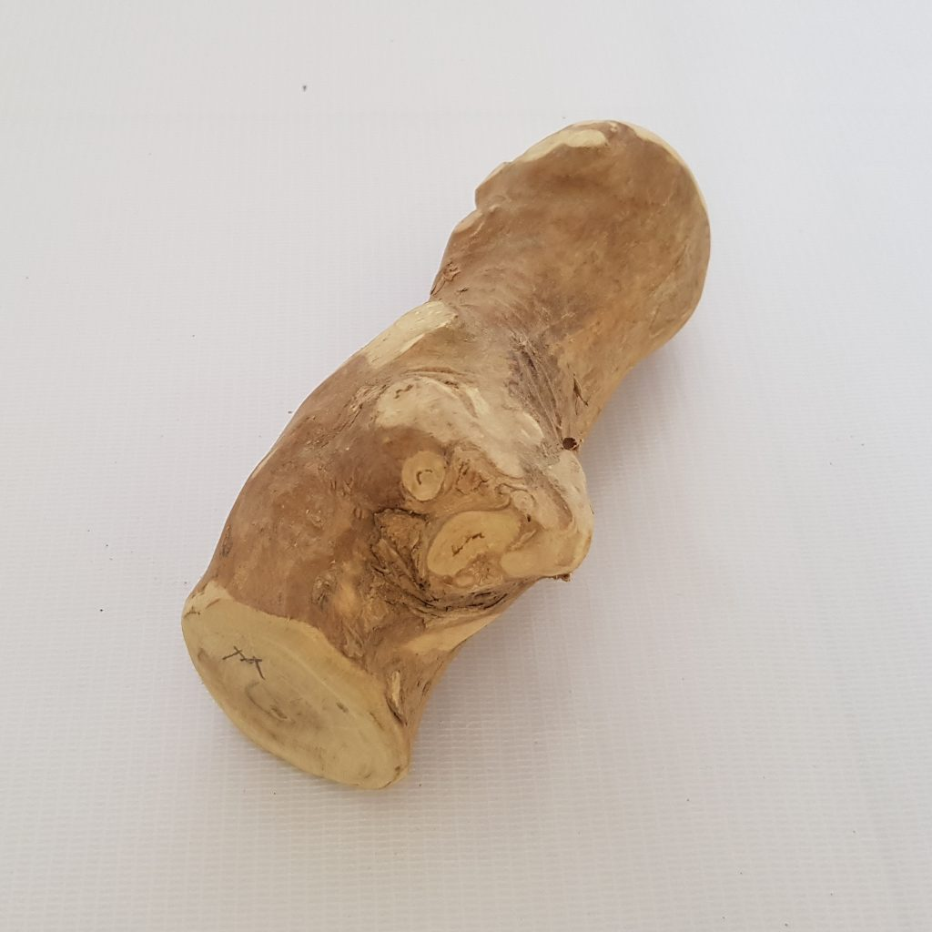 dog chews, dog toys, natural dog chews, dog chew toys, best chew toys for puppies, best chew toys for dogs, puppy chew toys, long lasting dog chews, puppy chewing, safe dog chews, best dog chews, dog chew sticks, safe chew toys for dogs, best chews for puppies, chew toy, best chew for dogs, good chew toys for puppies, rawhide chews, all natural dog chews, good chew toys for dogs, himalayan dog chew safe, dog dental chews, chewy dog, puppy chew sticks, best natural dog chews, dog chew toys that last, chew stop, best long lasting dog chews, dog chewing wood, good chews for dogs, best chew sticks for puppies, pet chews, dog chews for puppies, things for dogs to chew on, small dog chew toys, healthiest dog chews, best dog chews for puppies, long lasting chew toys for dogs, good chews for puppies, pet chew toys, natural chew toys for dogs, best things for dogs to chew on, toys for puppies to chew on, best things for puppies to chew, large dog chews, long lasting puppy chews, chewable dog toys, safe dog chews for puppies, chewies for dogs, things for puppies to chew on, dog chewing shoes, best things for puppies to chew on, organic dog chews, how to stop a dog from chewing, best chew sticks for dogs, safe long lasting dog chews, healthy puppy chews, healthy chew toys for dogs, small dog chews, edible chew toys for dogs, natural chews for puppies, all natural chew, hard dog chews, himalayan cheese dog chew, puppy chewing wood, best things for dogs to chew, safe things for dogs to chew, long lasting edible dog chews, natural dog chews for puppies, healthy long lasting dog chews, natural chew toys for puppies, natural chew, dog chew sticks safe, healthy dog chews for puppies, long lasting natural dog chews, dog bite toy, best chews for small dogs, himalayan dog chew for puppies, chew, all natural chew toys for dogs, best healthy dog chews, healthy chew sticks for dogs, the best chew toys for dogs, best all natural dog chews, best natural chew toys for dogs, dog with chew toy
